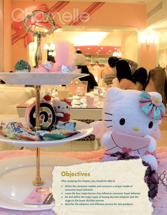 hello-kitty-pearsontextbook-chamellephotography